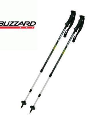 blizzard-poles